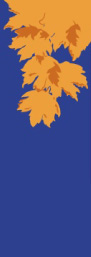 Fall Leaves on Blue Fabric Banner