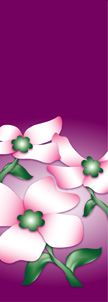 Dogwood Flowers Banner on Purple Background