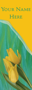 Watercolor Daffodils Banner