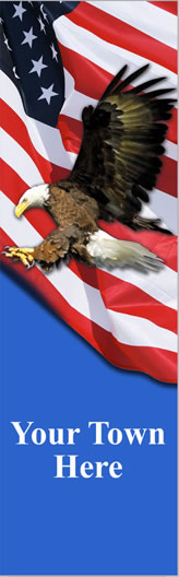 Flying Eagle with USA Flag Light Pole Banner