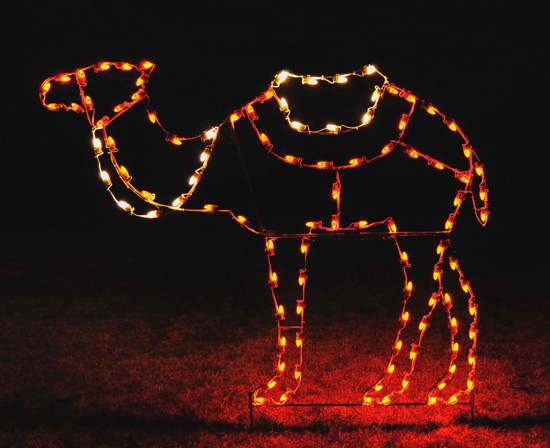 Standing Camel 5 Feet 4 Inches High for outdoor light nativity scene