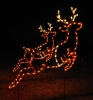 Large Animated Reindeer (Set of 2) LED light outdoor Santa decoration