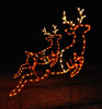 Set of 2 Prancing Reindeer Animated Holiday LED Lights Display, perfect for Santa Christmas Scene